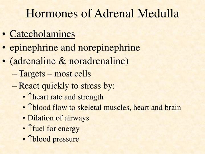 Hormones of Adrenal Medulla