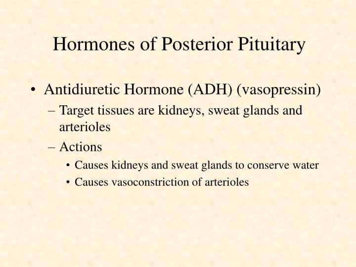 Hormones of Posterior Pituitary