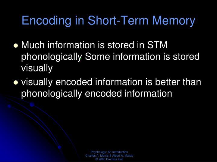 Encoding in Short-Term Memory