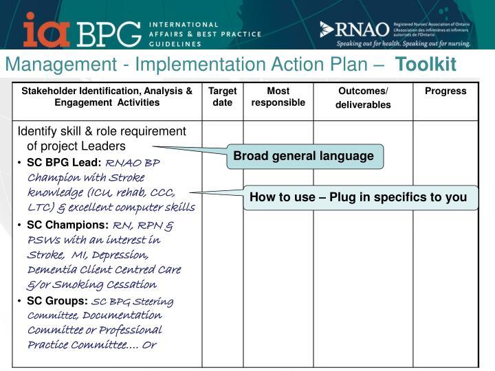Management - Implementation Action Plan –