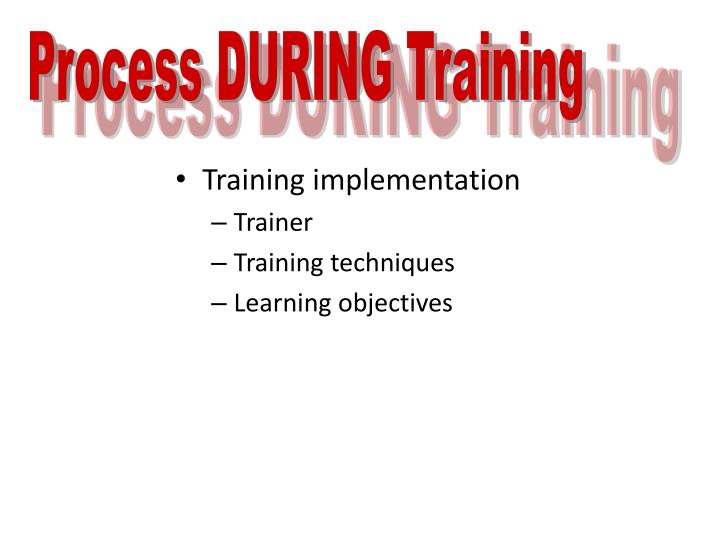 Process DURING Training