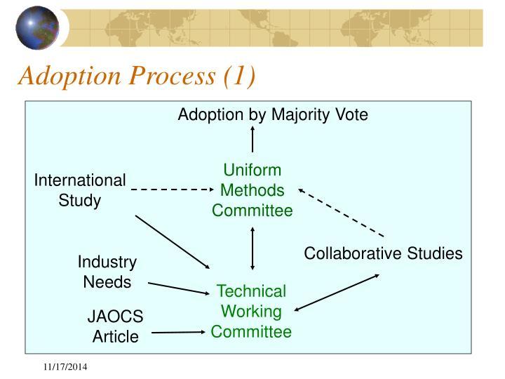 Adoption Process (1)
