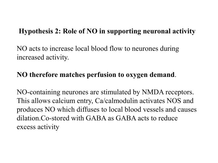 Hypothesis 2: Role of NO in supporting neuronal activity
