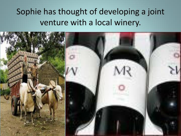 Sophie has thought of developing a joint venture with a local winery.