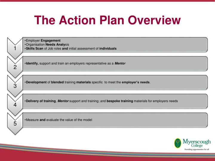 The Action Plan Overview