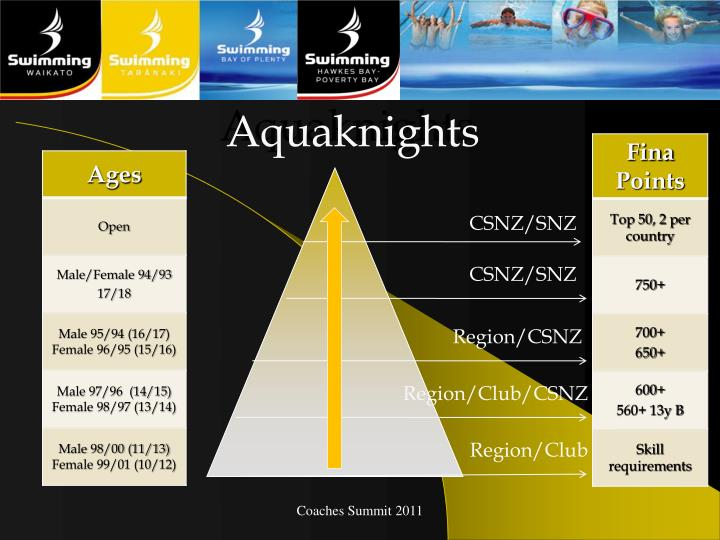 Aquaknights