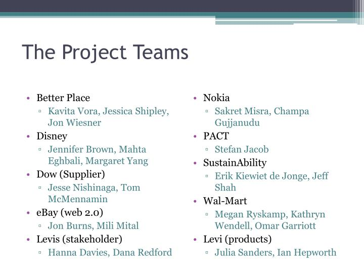 The Project Teams