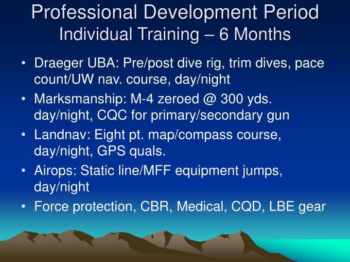 Professional Development Period
