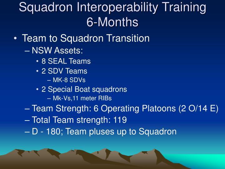 Squadron Interoperability Training