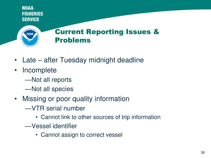 Current Reporting Issues & Problems