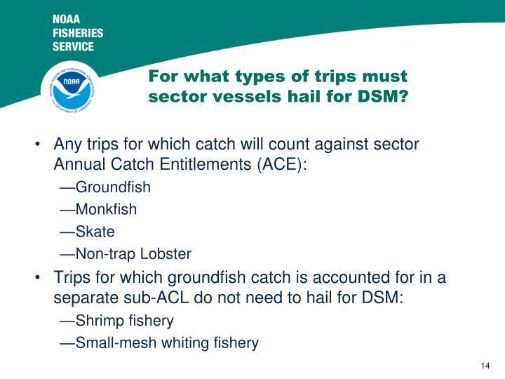 For what types of trips must sector vessels hail for DSM?
