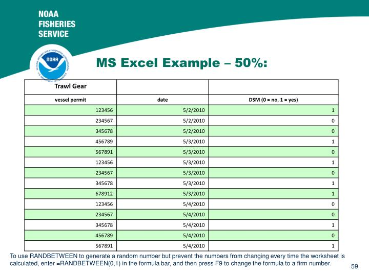 MS Excel Example – 50%: