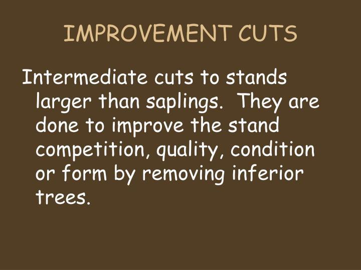 IMPROVEMENT CUTS