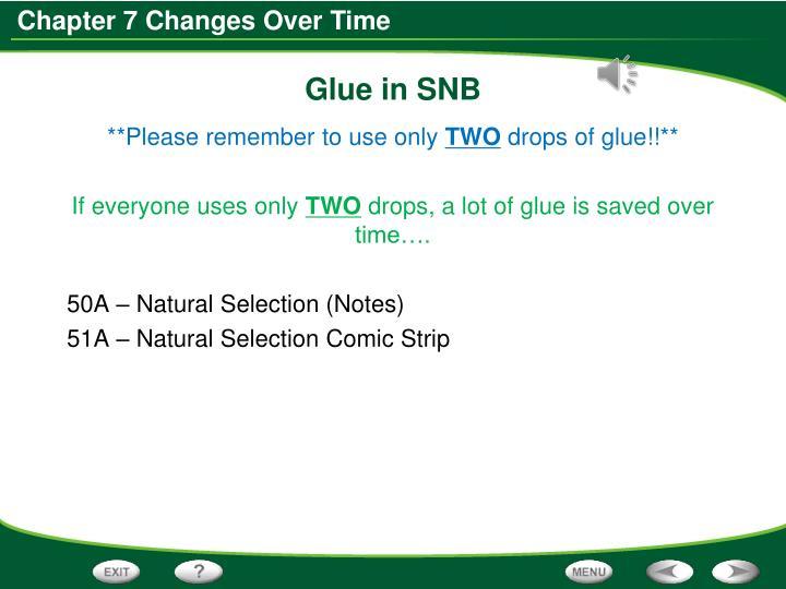 Glue in SNB