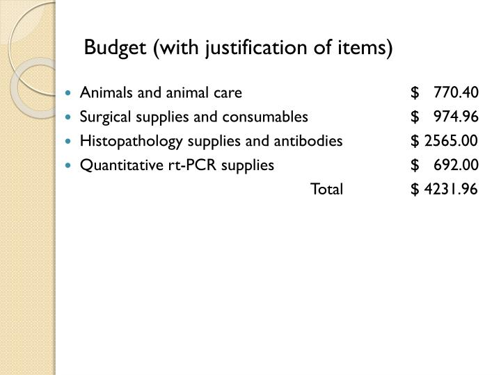 Budget (with justification of items)
