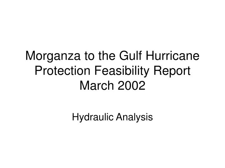 Morganza to the Gulf Hurricane Protection Feasibility Report March 2002