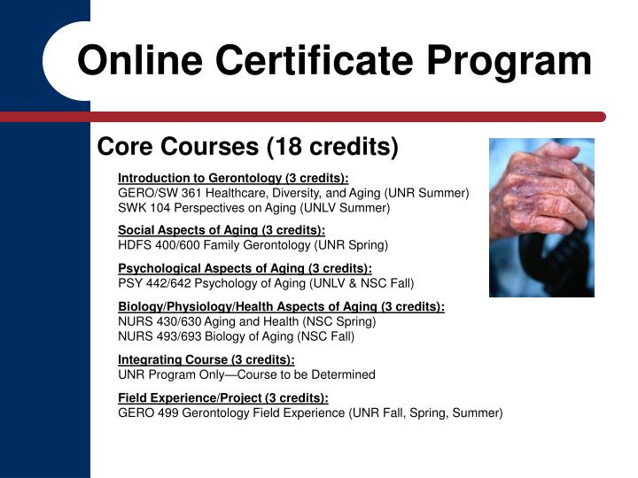 Online Certificate Program