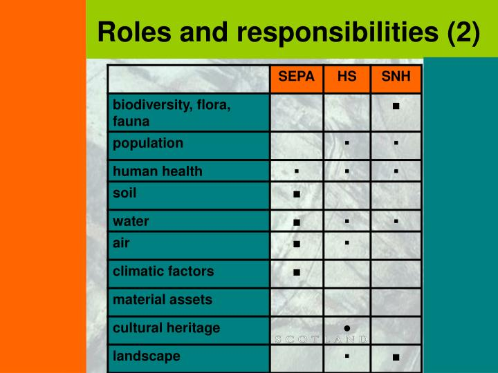 Roles and responsibilities (2)
