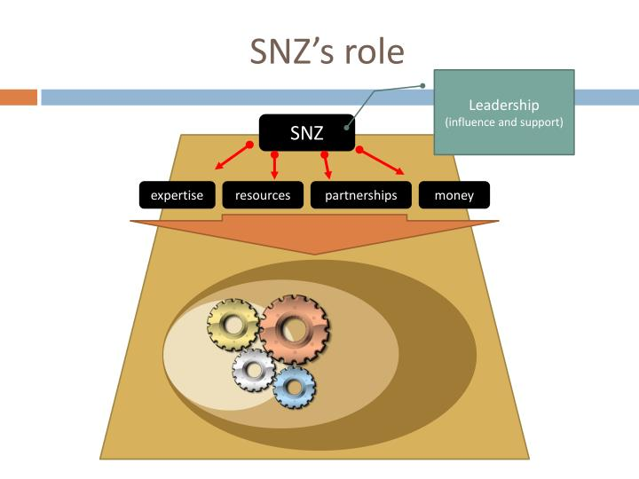 SNZ's role