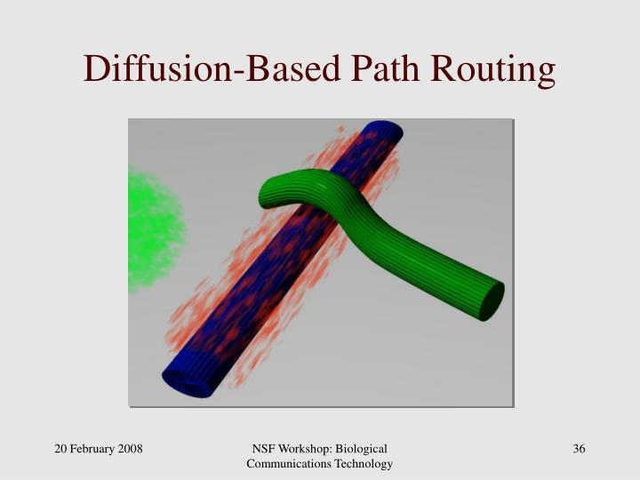 Diffusion-Based Path Routing