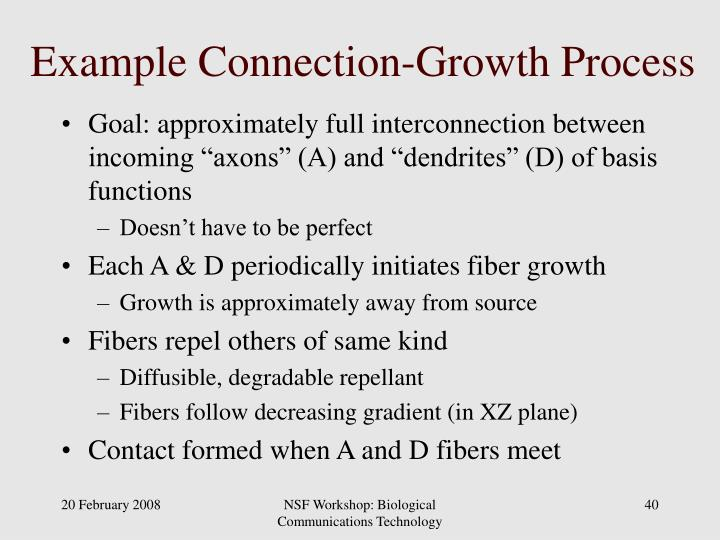 Example Connection-Growth Process