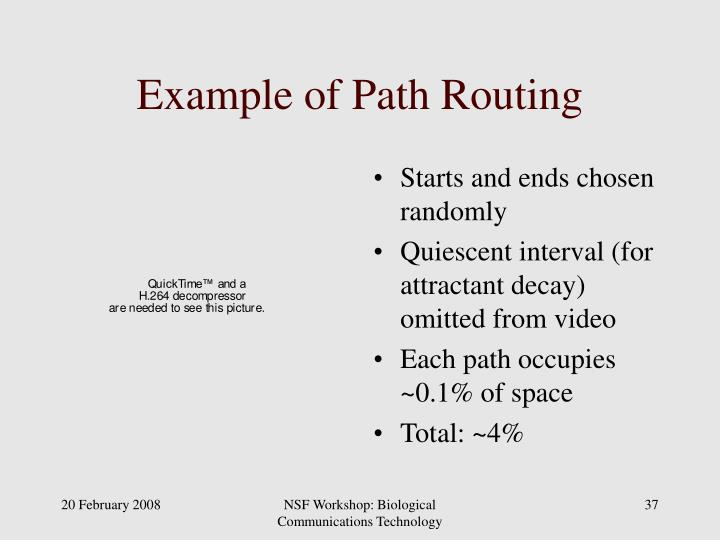 Example of Path Routing