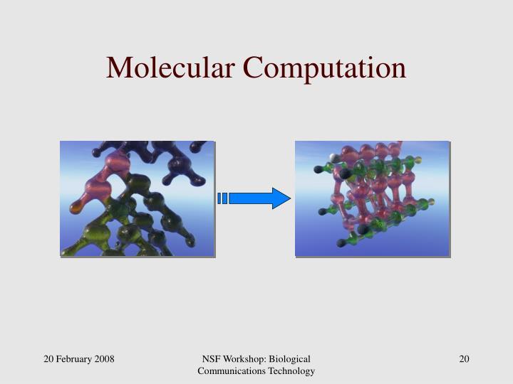 Molecular Computation