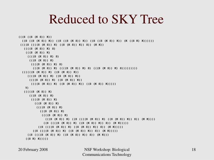 Reduced to SKY Tree
