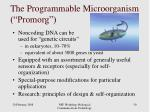 the programmable microorganism promorg