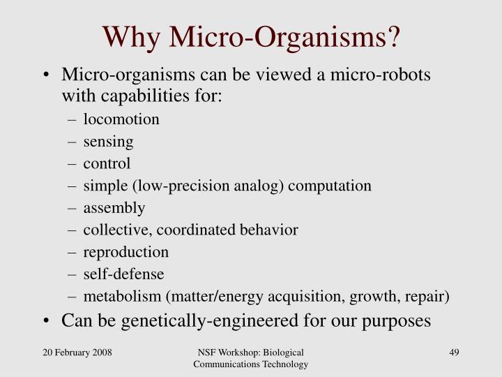 Why Micro-Organisms?