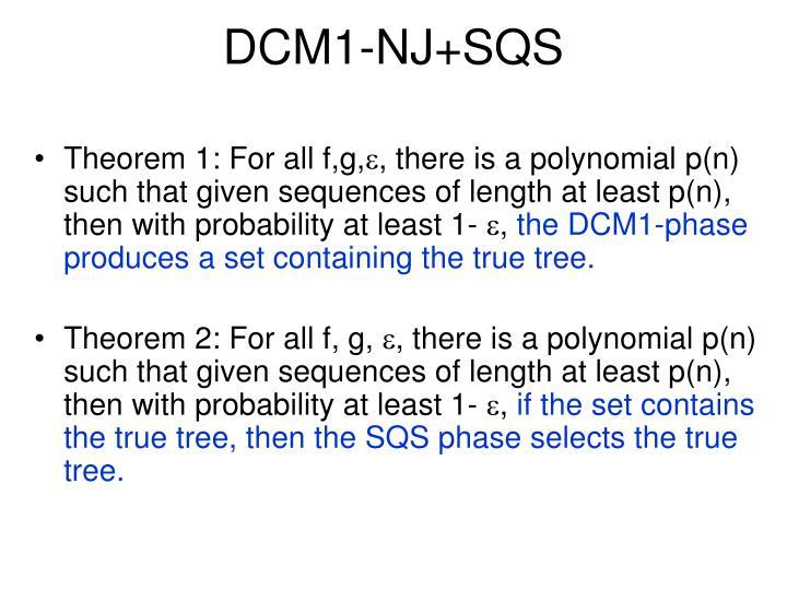 DCM1-NJ+SQS