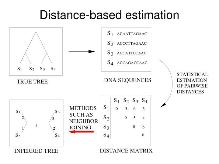 Distance-based estimation