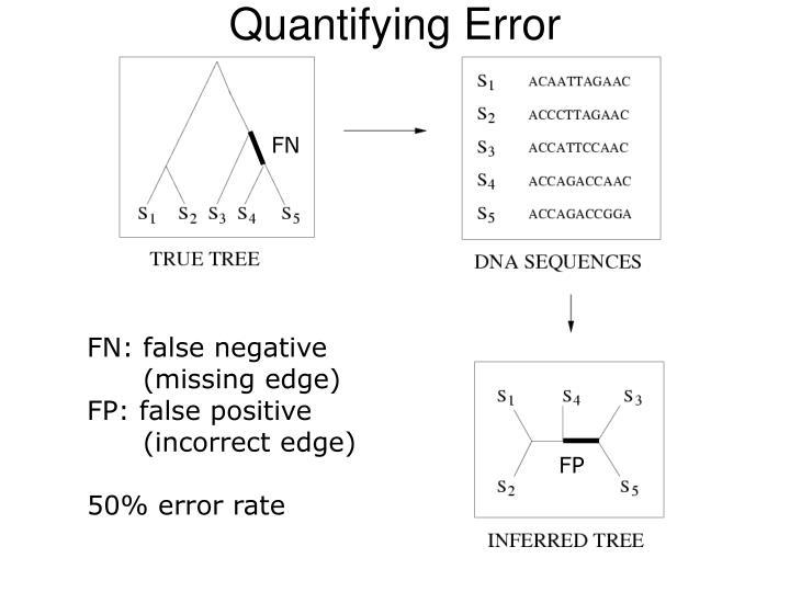 Quantifying Error