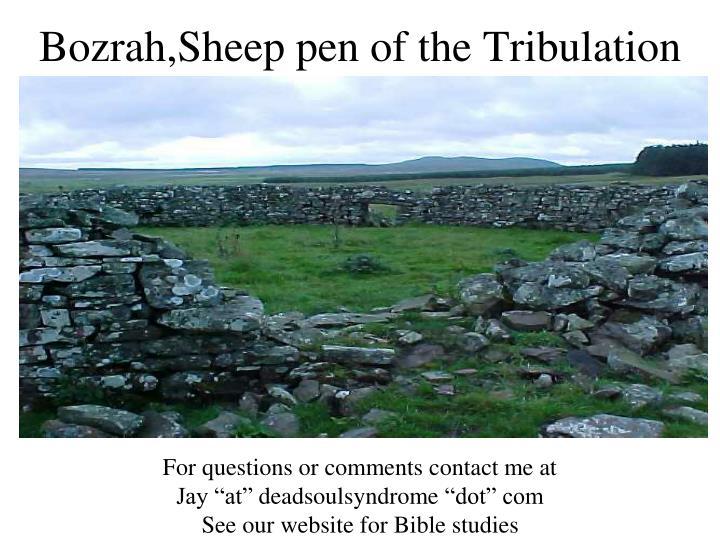 Bozrah,Sheep pen of the Tribulation