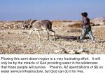 plowing in desert