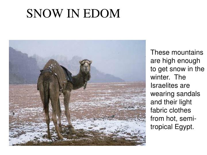 These mountains are high enough to get snow in the winter.  The Israelites are wearing sandals and their light fabric clothes from hot, semi-tropical Egypt.
