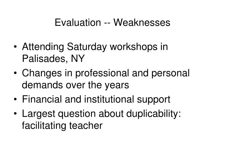 Evaluation -- Weaknesses