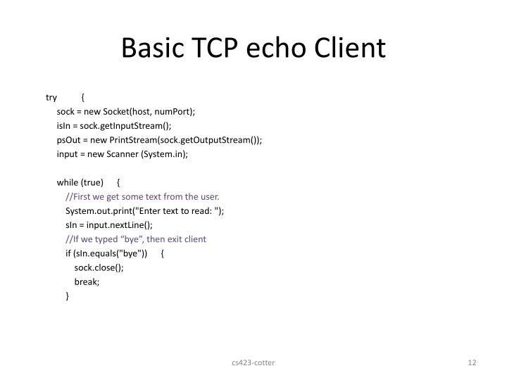 Basic TCP echo Client