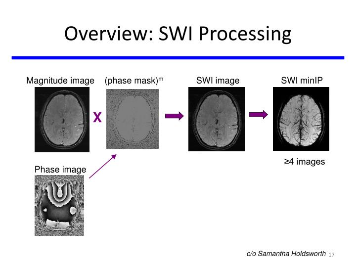 Overview: SWI Processing