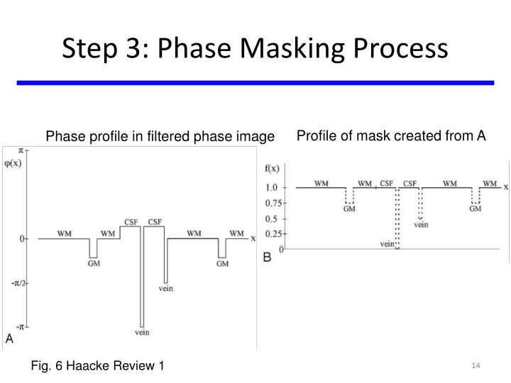Step 3: Phase Masking Process
