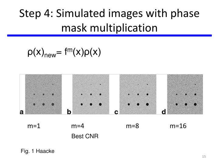 Step 4: Simulated images with phase mask multiplication