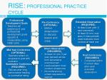 rise professional practice cycle