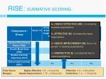 rise summative scoring