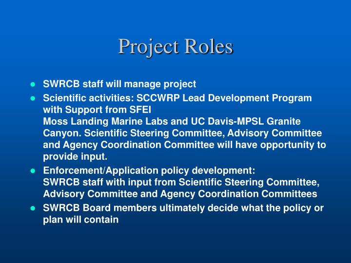 Project Roles