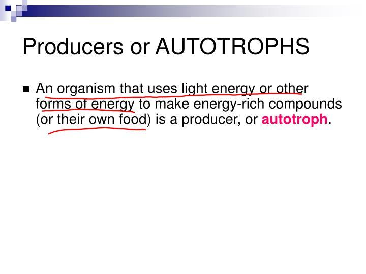 Producers or AUTOTROPHS