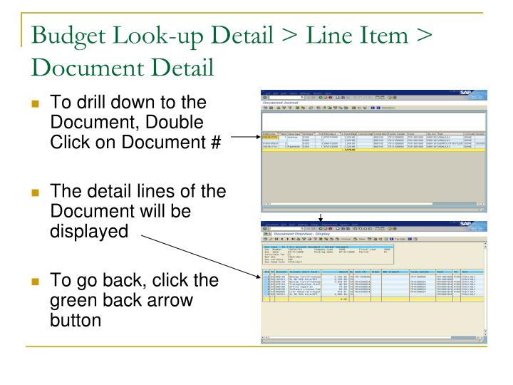 Budget Look-up Detail > Line Item > Document Detail