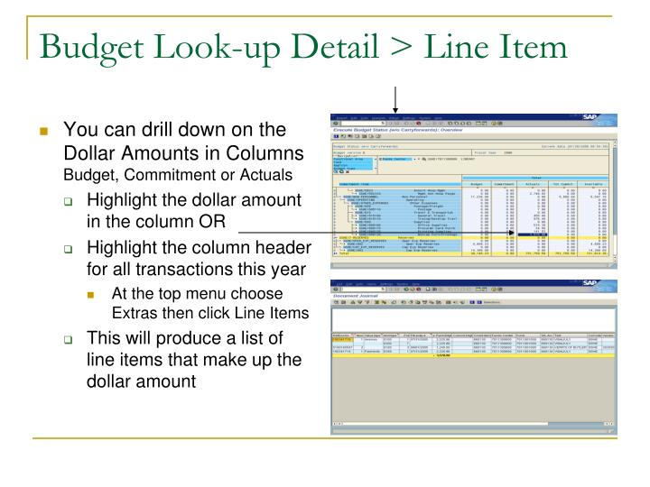 Budget Look-up Detail > Line Item