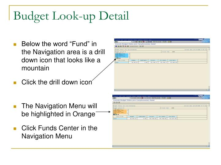 Budget Look-up Detail