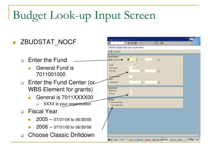 Budget Look-up Input Screen