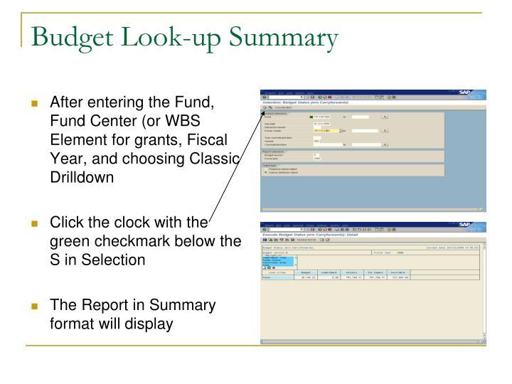Budget Look-up Summary